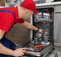 Get a complete insight of the remarkable Samsung Dishwasher!